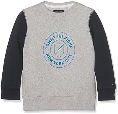 Tommy Hilfiger Ame Hilfiger Cn Hwk L/S, Suéter para Niños