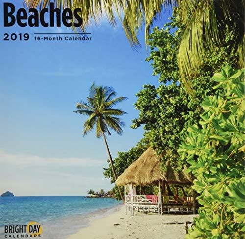 Beaches 2019 (MISC)
