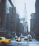 """VENKON - Origineller Duschvorhang """"Big Apple"""" mit New York Print - für reiselustige Duscher: B x H: 180 cm x 180 cm / inkl. Duschvorhangringe"""