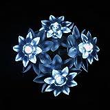 lightsgo® Batteriebetrieben Double Layer Lotus-LED Lichterkette 20leds 2m 20LED 2M cool white