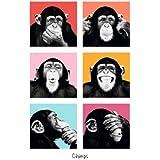 Posterboy 'Chimps' Poster (30.5 cm x 45.7 cm)