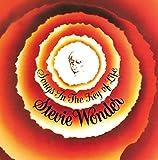 Songs in the Key of Life [Vinyl LP] -