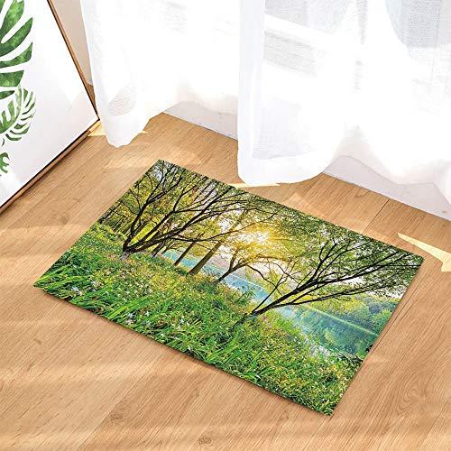 JHTRSJYTJ Natürliche Landschaft gebadet Teppich Sträucher Baum See Sonne Flash-Rutschfeste Matte Badematte fröhlich 15.7x23.6in Blüte