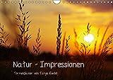 Natur - Impressionen Terminkalender von Tanja Riedel Schweizer KalendariumCH-Version (Wandkalender 2019 DIN A4 quer): Bilder zum Entspannen und ... 14 Seiten ) (CALVENDO Natur)