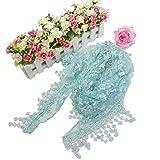 DDLBiz Lady Women Fashion Celebrity Style Rose Flowers Soft Lace Tassel Sheer Burntout Floral Print Triangle Mantilla Scarf Shawl