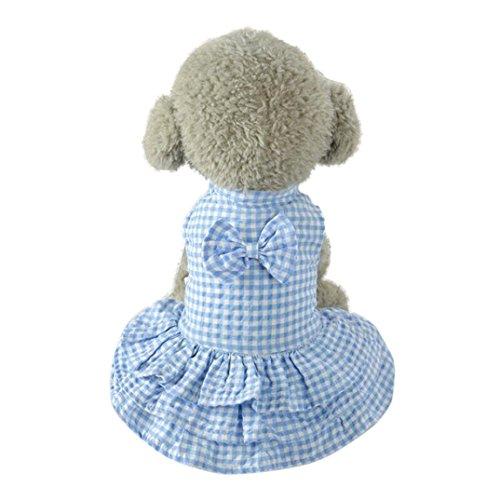 es gestreiftes Kleid Rosennie Niedliches süßes Haustier Puppy Dog Bekleidung Kleider kurzen Rock Kleid Haustierkleidung Hund Katze Kleid Spitze Rock Haustier Welpen Hund Prinzessin Kostüm Kleidung (S, Blau) (Welpen Kostüm)