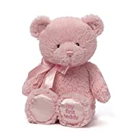Gund My 1st Teddy _PARENT by Gund