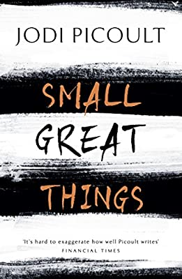 Small Great Things: 'To Kill a Mockingbird for the 21st Century'