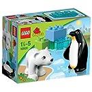 LEGO Duplo - Polartiere - 10501