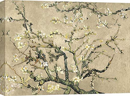 Art Print Cafe – Cuadro – Impresion Lienzo - Vincent