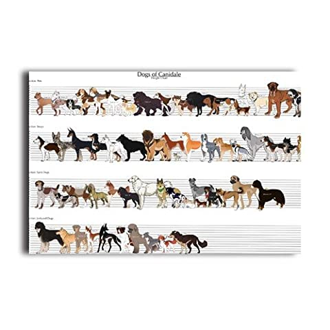 Wall Paper Wall Sticker With Dogs Height Chart Customized 20x30 Inch Poster
