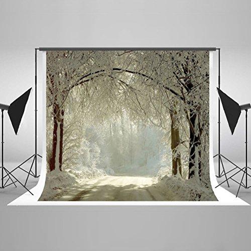 ntergründen Winter Scenery Snow Forest Photography Hintergrund ohne Falten waschbar wiederverwendbar Maßgeschneiderte Baumwolle Hintergrundstoff für Foto Studio Requisiten (Professionelle Halloween-foto-shootings)