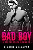 Bad Boy - A Stepbrother Romance