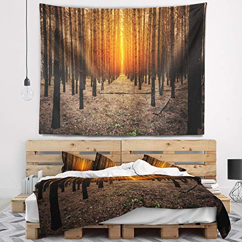 Designart TAP11600-60-50 'Halloween Themed Spooky Dark Forest Blanket Décor Art for Home and Office Wall Tapestry, Large: 60 in. x 50 in