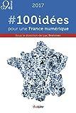 #100idées pour une France numérique (French Edition)