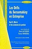 Les Défis du Sensemaking en Entreprise - Karl E. Weick et les sciences de gestion