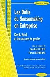 Les Défis du Sensemaking en Entreprise : Karl E. Weick et les sciences de gestion