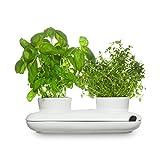 Sagaform 5015859 - Herbs&Spices Duo Kräutertopf
