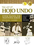 The Art of Hojo Undo: Power Training for Traditional Karate (English Edition)