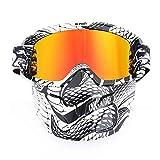 CXJ Motocross-Schutzbrillen Motorradbrillen Winddicht Staubdicht Schmutz Fahrradbrillen Sport Kratzfest Wrap Reitbrillen Abnehmbare Maske über Brille,Snake-RedLens