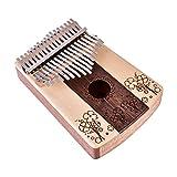Dilwe 17 Clave Kalimba Pulgar Piano, Cuatro Hojas Patrón de Trébol Pulgar Piano 17 Tonos Instrumento Musical Juguete con Herramienta de Ajuste Pegatina Bolsa de Almacenamiento