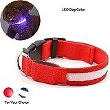 RCRuning-EU Hundehalsband LED Dog Collar,Leuchtendes Halsbänder Blinkender LED Hunde Sicherheits Halsband Hundehalsband Nylon with USB Wiederaufladbar- L- 2.5 X 56cm