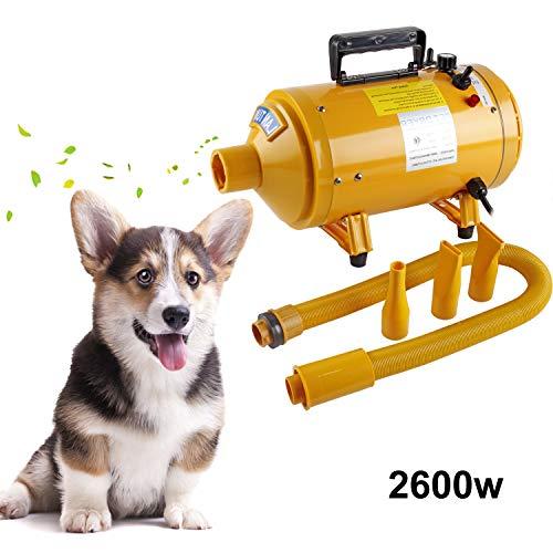 BAODE Profi Hundefön Hundetrockner Pet Trockner Tierfön Pet Dryer Hundepflege Haartrockner Haustier Pflege für Hunde (Gelb 2600W)