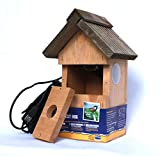 BIRD NESTBOX WEBCAMERA (FOR PC/LAPTOP) IN A...