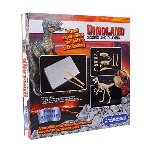 DAN DISCOUNTS Dinosaure Fossile Creusement Trousse,Dinosaure Kit de fouille Archéologique Jeu D'archéologie pour Garçons – Tyrannosaurus 2