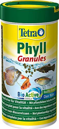 TetraPhyll Granules (Hauptfutter in Granulatform für alle pflanzenfressenden Zierfische, mit lebenswichtigen Ballaststoffen plus plus Präbiotika), 250 ml Dose (Neon Fische Pflanzen)