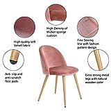 Esszimmerstuhl Coavas samt weich Kissen Sitz und Rücken mit hölzernen Metallbeine Küche Stühle für Ess - und wohnzimmer Stühle Set von 2, Rosa - 3