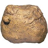 Exoterra Distributeur d'Insecte Feeding Rock pour Reptiles et Amphibiens 12x10x4,5 cm