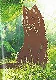 Hund Lassy Collie Höhe 80 cm Schäferhund Edelrost Rost Metall Gartendekoration + Original Pflegeanleitung von Steinfigurenwelt