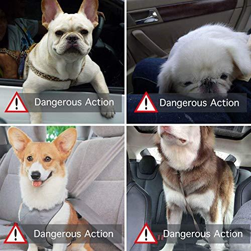 Zoom IMG-1 slopow seggiolino auto per cane