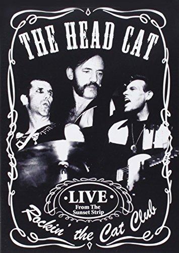 rockin-the-cat-club