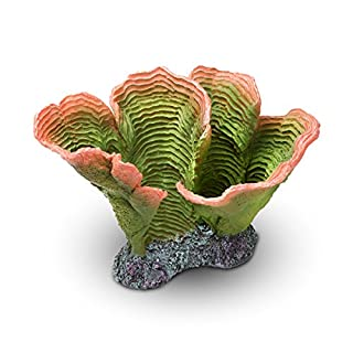 Aquatop Aquatic Supplies CD-05GRP Coral Decor, Green/Orange