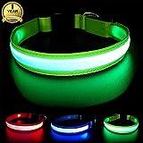 MASBRILL Wiederaufladbar LED Hund Halskette Halsband perfekt für Haustiere Hund - Wasserdicht (M, Grün)