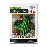 Pinkdose Green Giant Asparago Semi grande NO-OGM semi di officinalis Orto impianto professionale di imballaggio