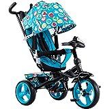 Tricicli per bambini, biciclette, passeggini ( Color : Light blue )
