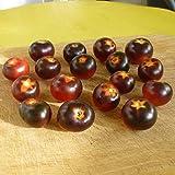 10 Samen schwarze Cherrytomate – Massenträger, süße Früchte