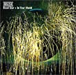 Dead Star / In Your World - Maxi CD