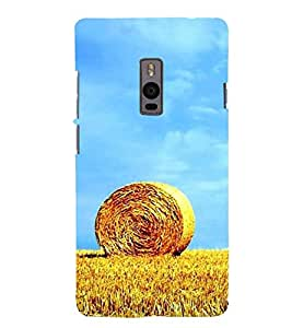 CHAPLOOS Designer Back Cover For OnePlus Two