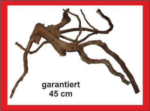 Wüstenwurzel, garantiert 45cm, Aquarium, Terrarium, Mangrovenwurzel