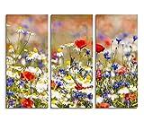 3x40x90cm (Gesamt:130x90cm) 3teiliges Bild auf Leinwand Blumenwiese Frühling Wandbild auf Leinwand als Panorama