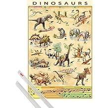 Póster + Soporte: Dinosaurios Póster (91x61 cm) Personajes Y Evolución Y 1 Lote De 2 Varillas Transparentes 1art1®