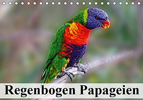 Regenbogen Papageien (Tischkalender 2019 DIN A5 quer): Die knallbunten Inselbewohner aus dem Südpazifikraum (Monatskalender, 14 Seiten ) (CALVENDO Tiere)