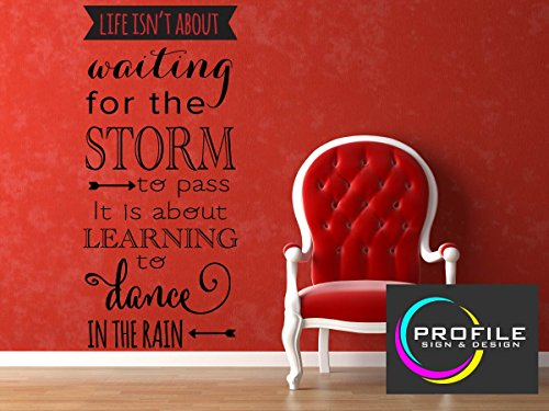 life-isn-t-about-waiting-for-the-storm-to-pass-it-is-about-learning-to-dance-in-the-rain-inspirieren
