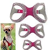 FidgetGear XXXS/XXS/XS XS Hundegeschirr Weiche Weste Halsband für Chihuahua Yorkie
