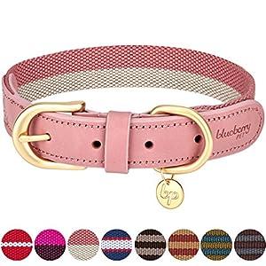 Für Haustiereltern, die den Vintage-Trend und modernen schicken Stil bevorzugen, ist dieses Designer-Lederhalsband ein Must-Have! Bei so viel Auswahl ist es nicht verwunderlich, dass es selbst erfahrenen Hundebesitzern schwer fällt das richtige Halsb...
