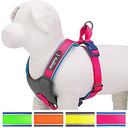 blueberry-pet-soft-comfy-new-summer-hope-3m-reflective-harness-vest-chest-girth-43cm-51cm-neck-42cm-
